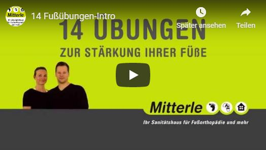 youtube-video-mitterle